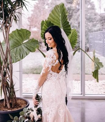 Robes de mariée de créateur sirène | Robe de mariée simple en dentelle_4
