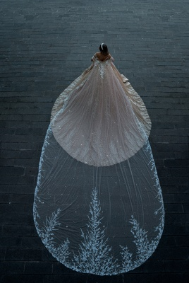Robes de mariée de créateurs princesse paillettes   Robes de mariée avec dentelle en ligne_4