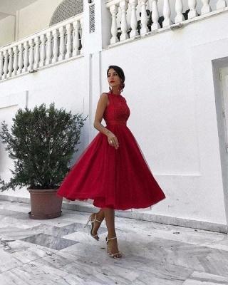 Forme Princesse Col Rond Sans Manches Tulle Robe de Soirée Dentelle_3